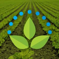 Logotipo Irrigação e Equipamentos
